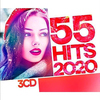 55 Hits 2020 (2020) MP3