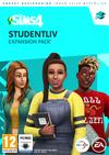 The Sims 4: в институте (2020)