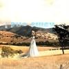 Britney Spears  - Коллекция минусовок, караоке, instrumental