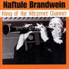 Naftule Brandwein - King of the Klezmer Clarinet