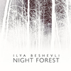 Ilya Beshevli  - Night Forest - 2014, MP3, 320 kbps