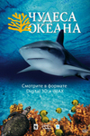 Чудеса океана / Ocean Wonderland