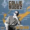 Collie Buddz - Дискография 2007-2019
