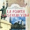 Stefan Voda / Штефан Водэ - La poarta la Stefan Voda
